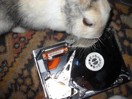 Puissance aimant disque dur